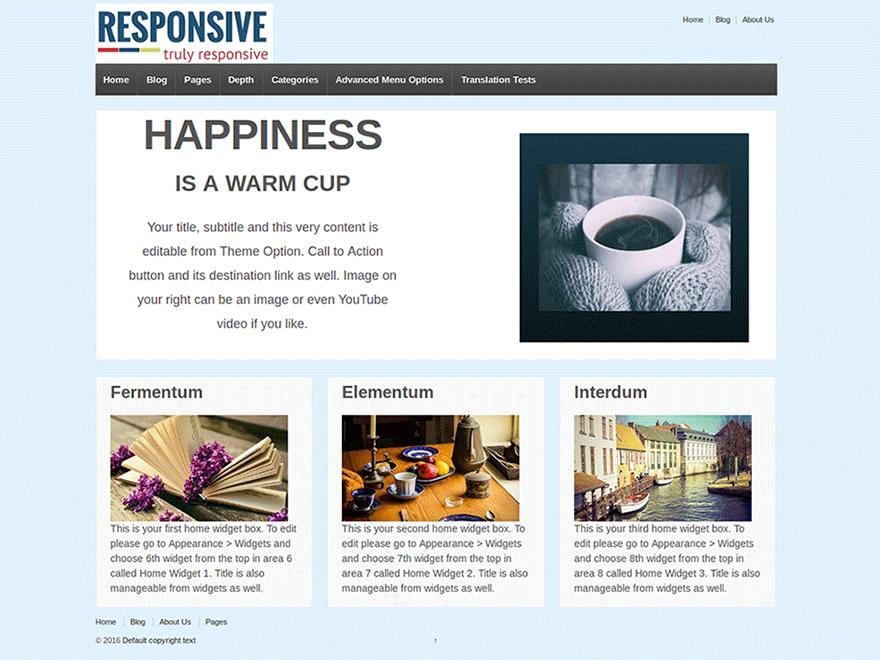 responsive-best-wordpress-theme