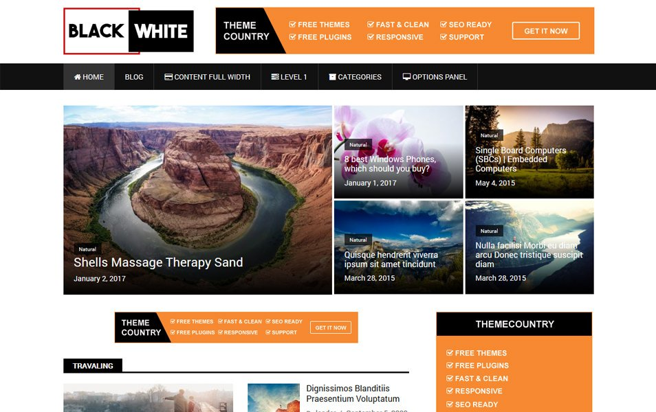 BlackWhite Lite Responsive WordPress Theme