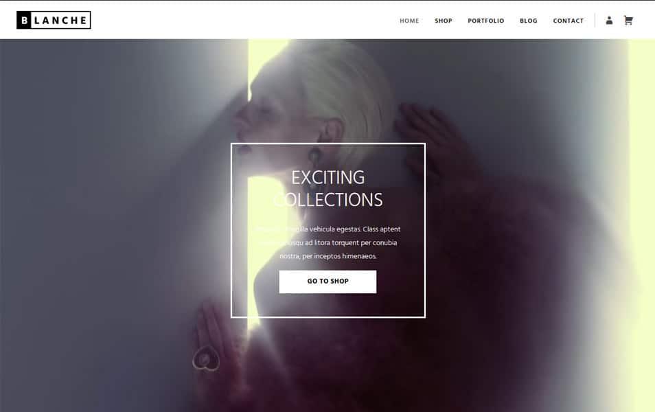 Blanche Lite Responsive WordPress Theme