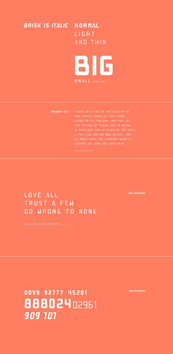 Brisk Pro font - Preview 03
