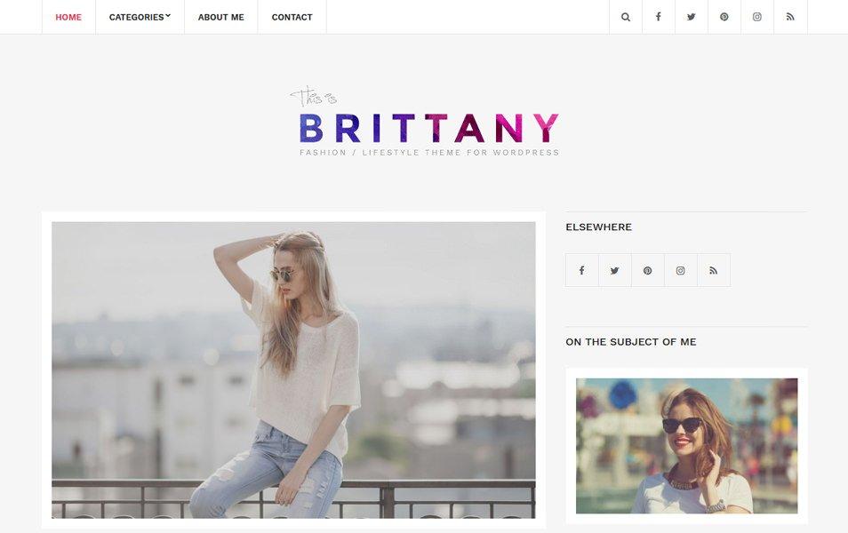 Brittany Light Responsive WordPress Theme