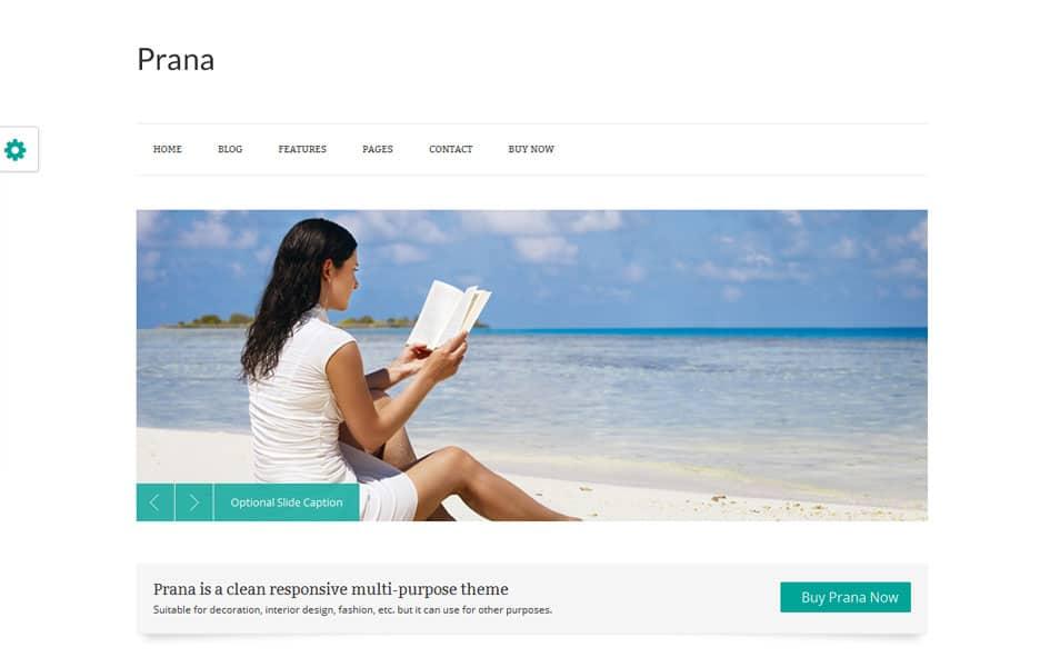 Prana Free Portfolio WordPress Theme