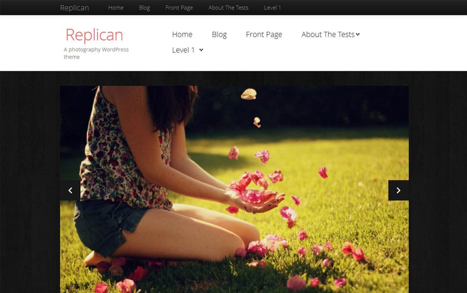 Replican Free Photography WordPress Theme