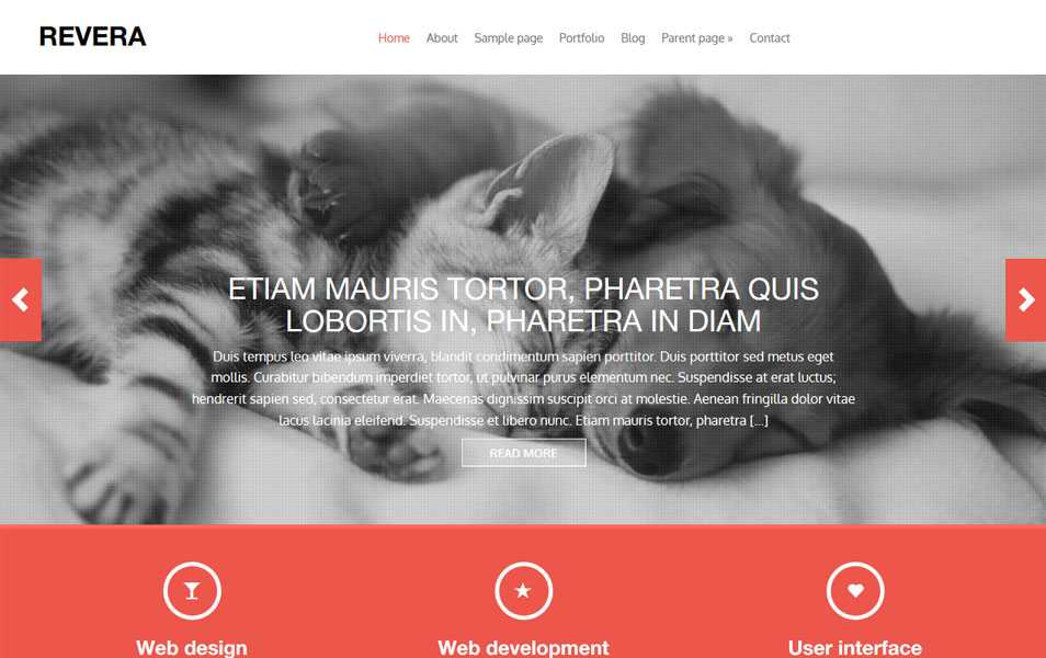 Revera WordPress Theme