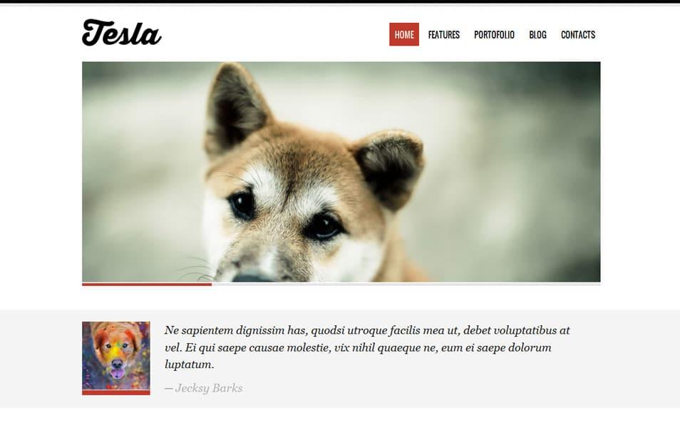 Tesla Free Portfolio WordPress Theme