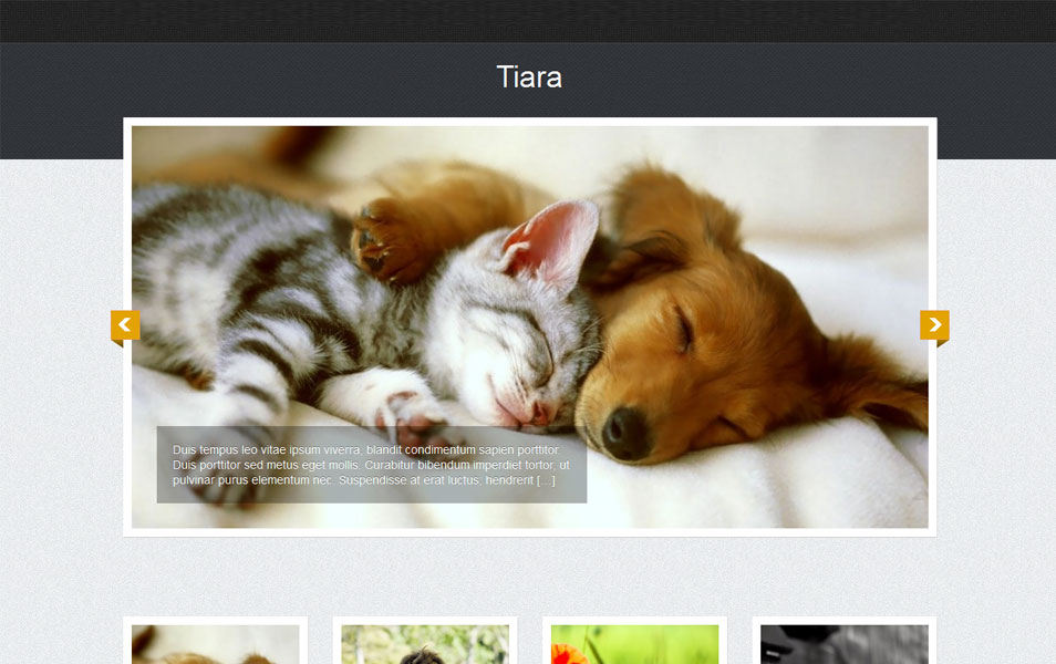 Tiara Free Photography WordPress Theme
